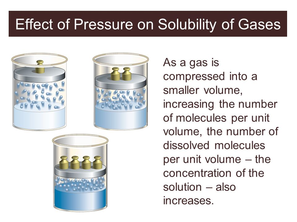 Effect of Pressure on Solubility of Gases As a gas is compressed into a smaller volume, increasing the number of molecules per unit volume, the number