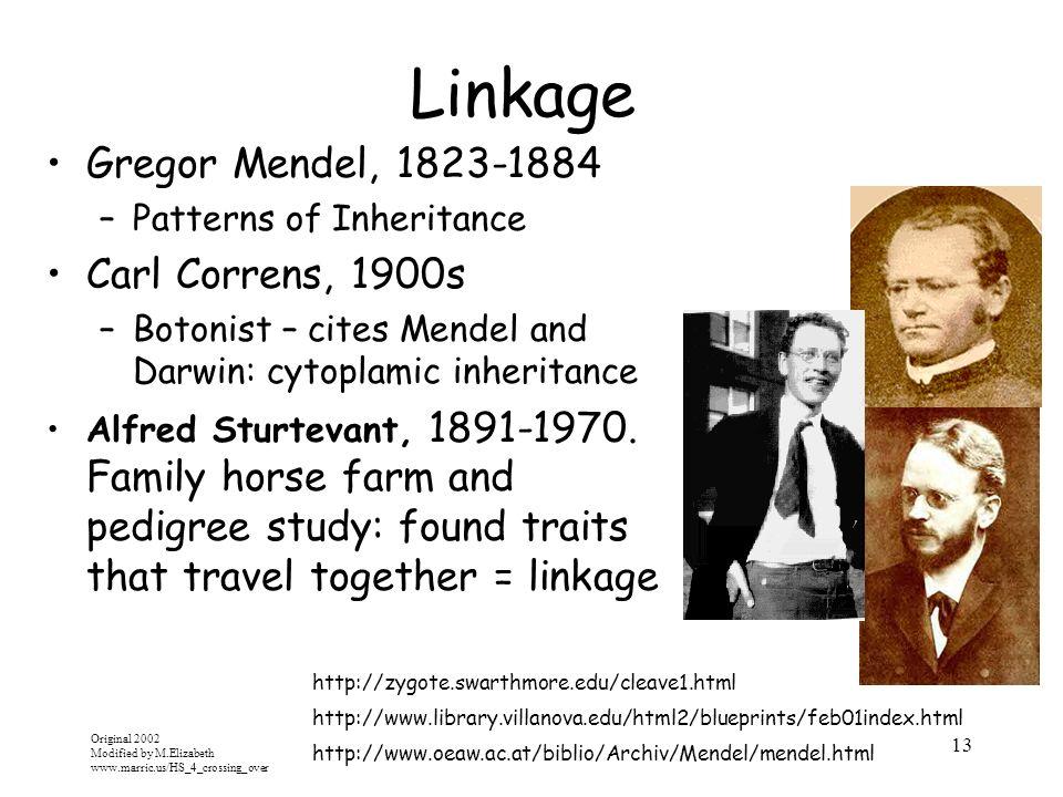 Original 2002 Modified by M.Elizabeth www.marric.us/HS_4_crossing_over 13 Linkage Gregor Mendel, 1823-1884 –Patterns of Inheritance Carl Correns, 1900