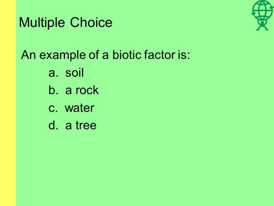 Multiple Choice An animal that eats only plants is a: a. primary consumer b. secondary consumer c. tertiary consumer d. primary producer