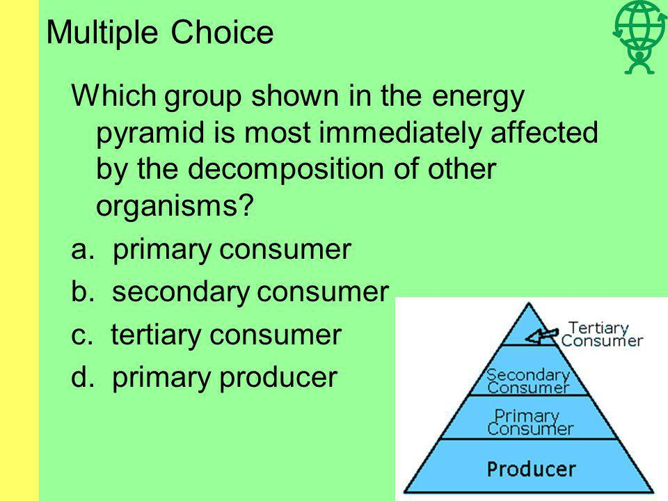 Multiple Choice Which group shown in the energy pyramid is most immediately affected by the decomposition of other organisms.