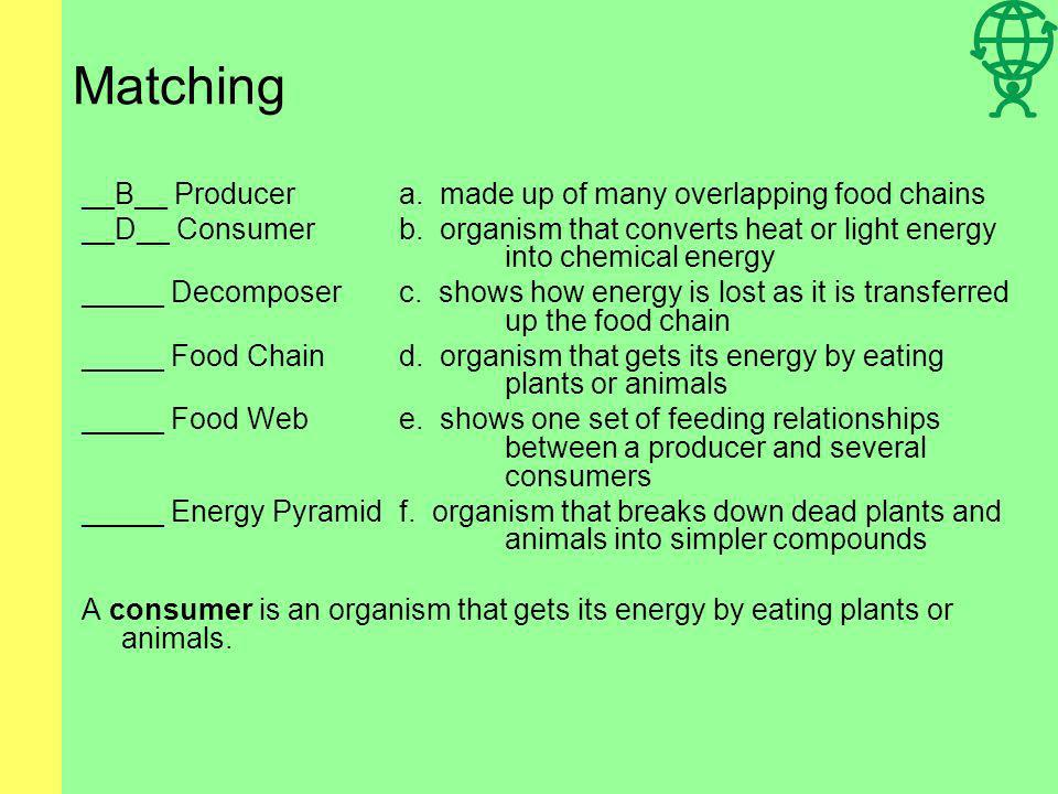 Matching __B__ Producera. made up of many overlapping food chains _____Consumerb. organism that converts heat or light energy into chemical energy ___