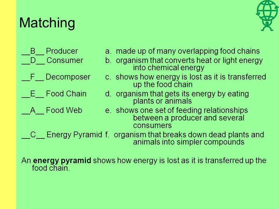 Matching __B__ Producera.made up of many overlapping food chains __D__ Consumerb.