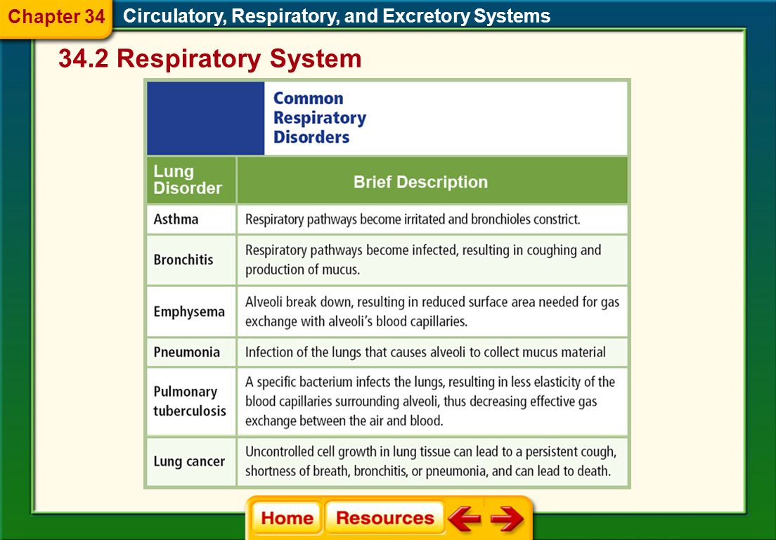 Circulatory, Respiratory, and Excretory Systems This reduces the size of the chest cavity as the diaphragm moves up. Chapter 34 34.2 Respiratory Syste