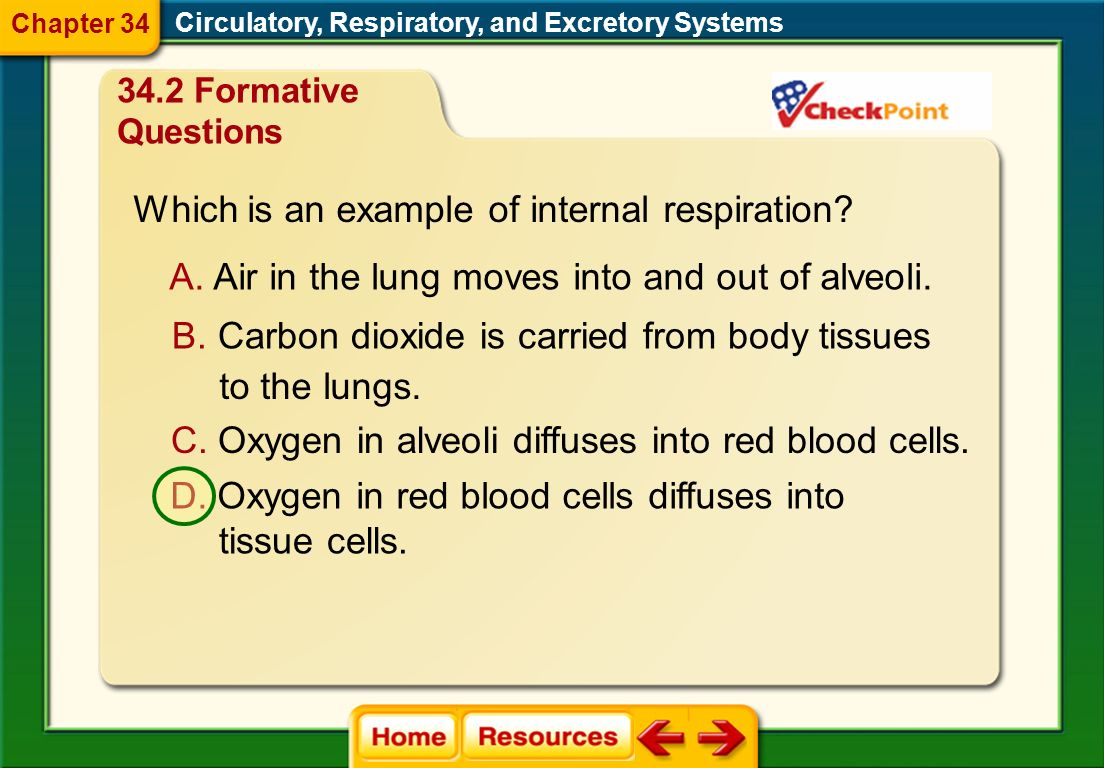 What internal stimulus causes breathing rate to increase? A. a high concentration of O 2 in the blood B. a high concentration of CO 2 in the blood C.