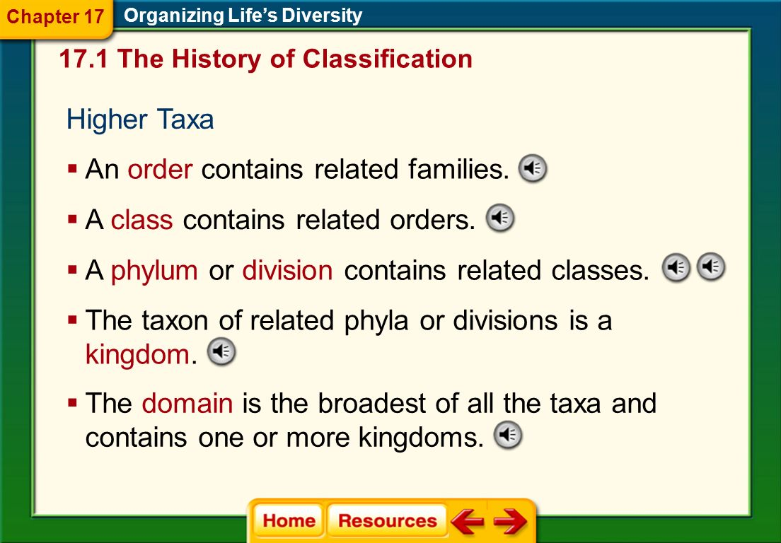 A family is the next higher taxon, consisting of similar, related genera. Family Organizing Lifes Diversity 17.1 The History of Classification Chapter