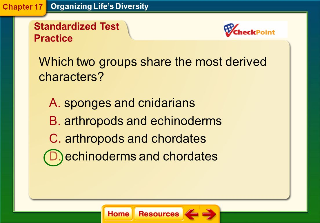 Organizing Lifes Diversity A. It shows the chromosomal structure of different species. Chapter 17 B. It shows the genetic makeup of a common ancestor.