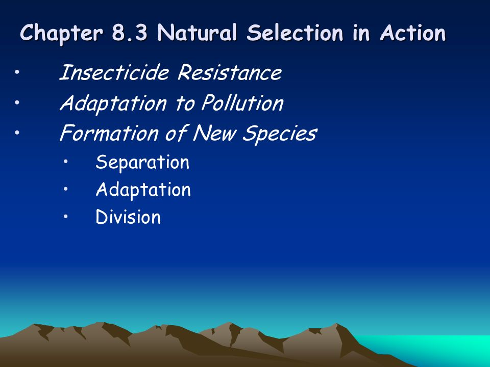Chapter 8.3 Natural Selection in Action Insecticide Resistance Adaptation to Pollution Formation of New Species Separation Adaptation Division