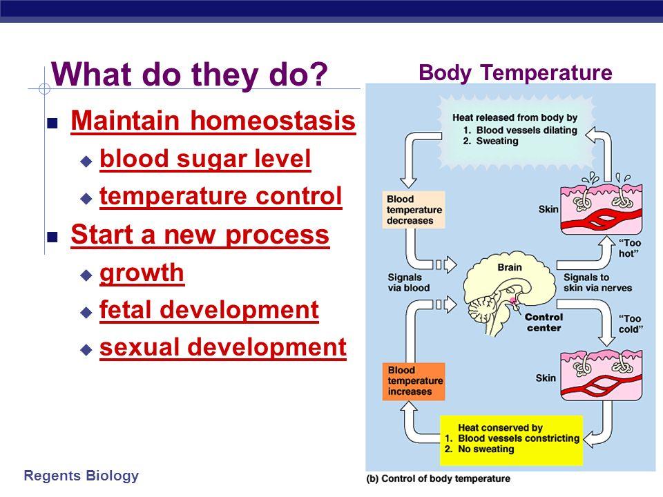 AP Biology 2006-2007 Any Questions??