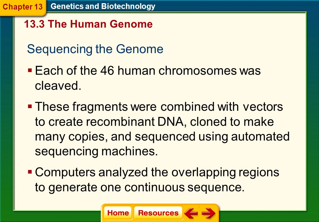 The Human Genome Project The goal of the Human Genome Project (HGP) was to determine the sequence of the approximately three billion nucleotides that