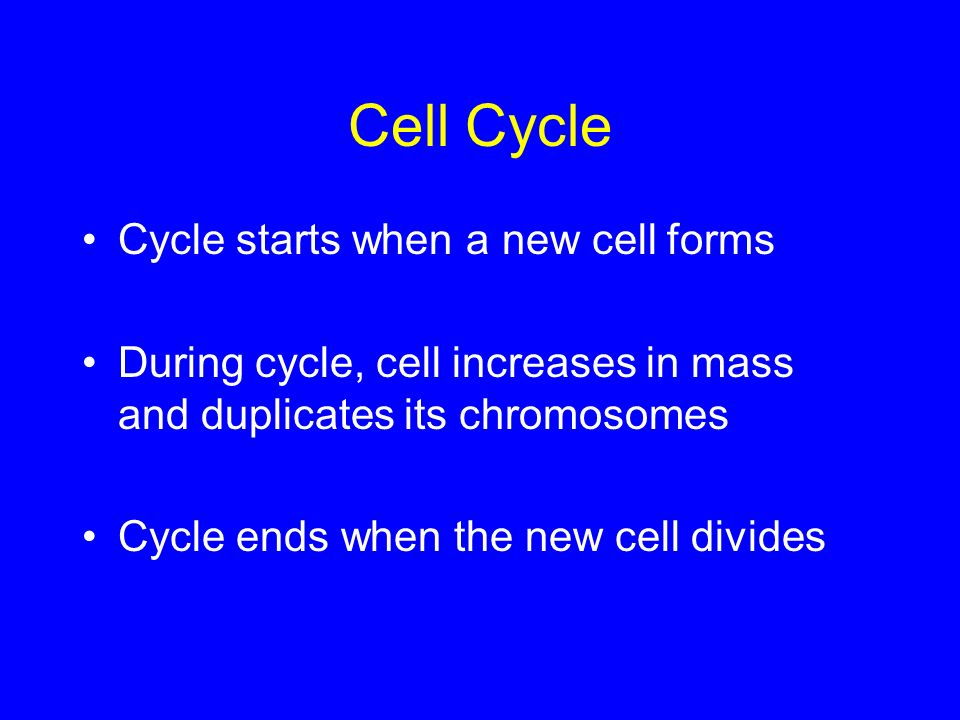 Cell Cycle Cycle starts when a new cell forms During cycle, cell increases in mass and duplicates its chromosomes Cycle ends when the new cell divides