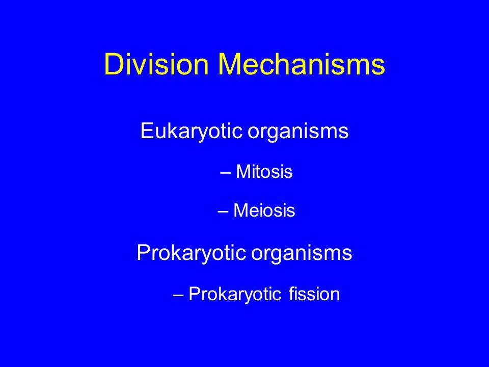 Division Mechanisms Eukaryotic organisms –Mitosis –Meiosis Prokaryotic organisms –Prokaryotic fission