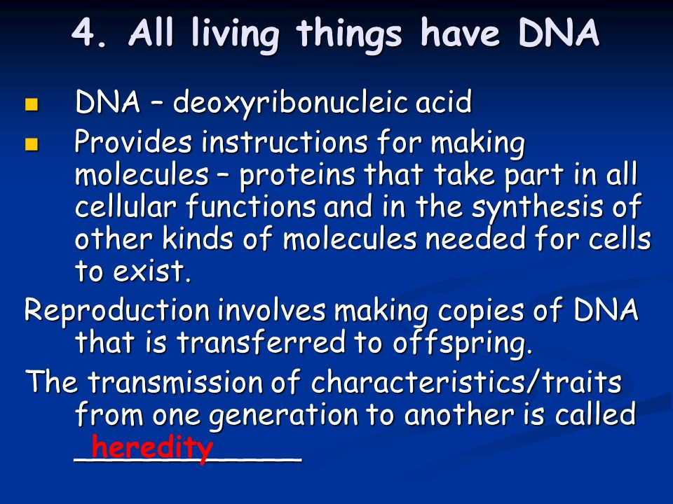 4. All living things have DNA DNA – deoxyribonucleic acid DNA – deoxyribonucleic acid Provides instructions for making molecules – proteins that take