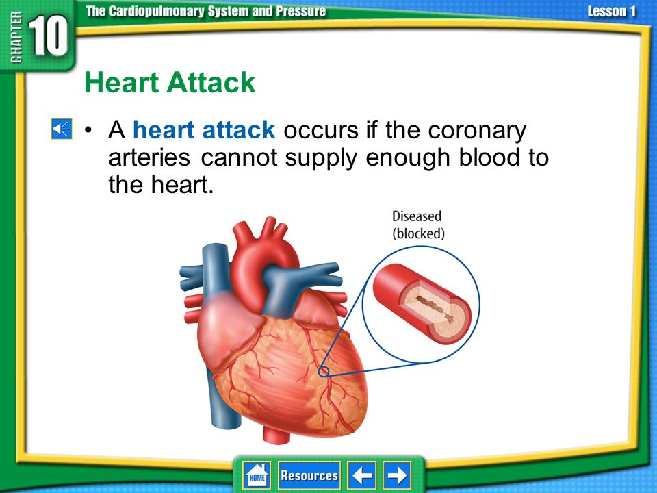 Problems in Circulatory System (cont.) Risk factors include: –being overweight –a diet high in saturated fat and cholesterol –smoking –high blood suga