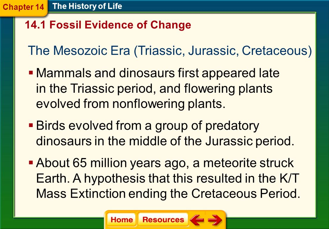 The History of Life A mass extinction ended the Paleozoic era at the end of the Permian period.