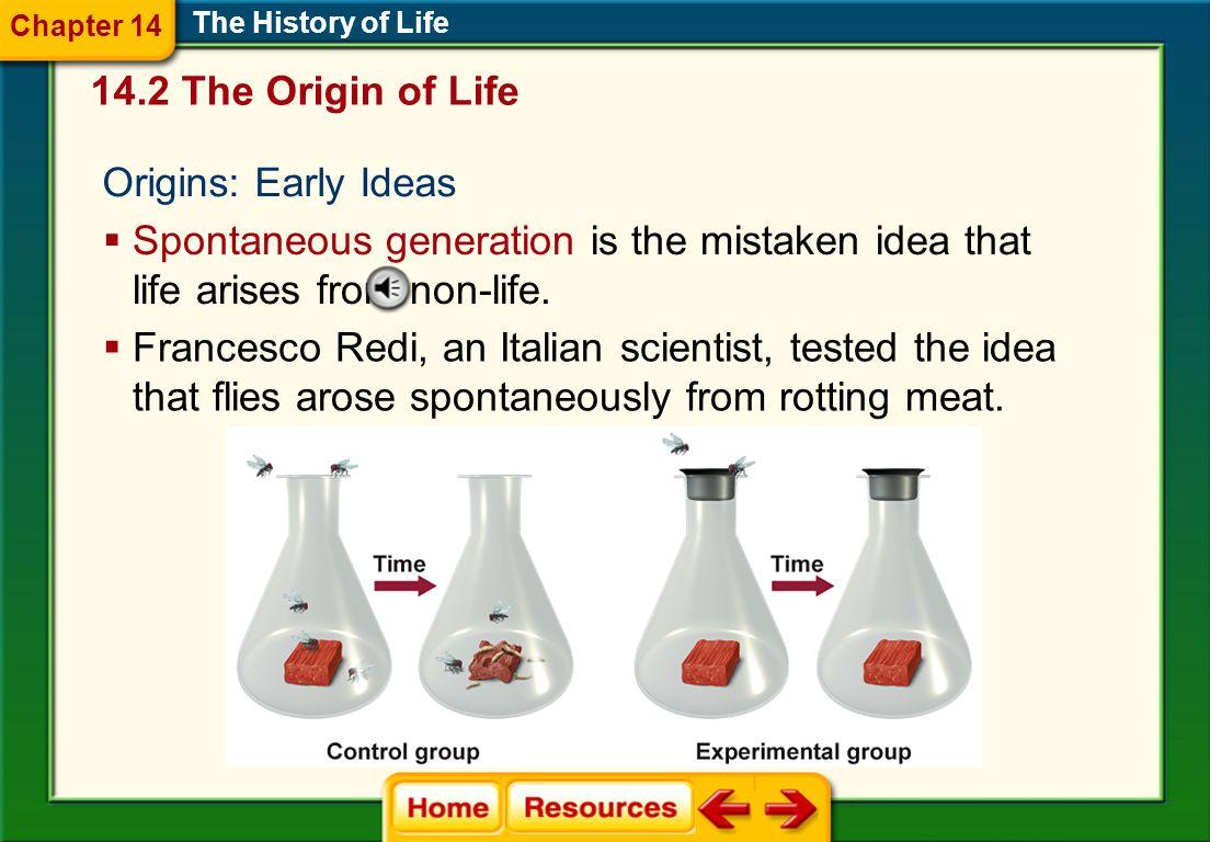 The Cenozoic Era The History of Life Mammals became the dominant land animals.