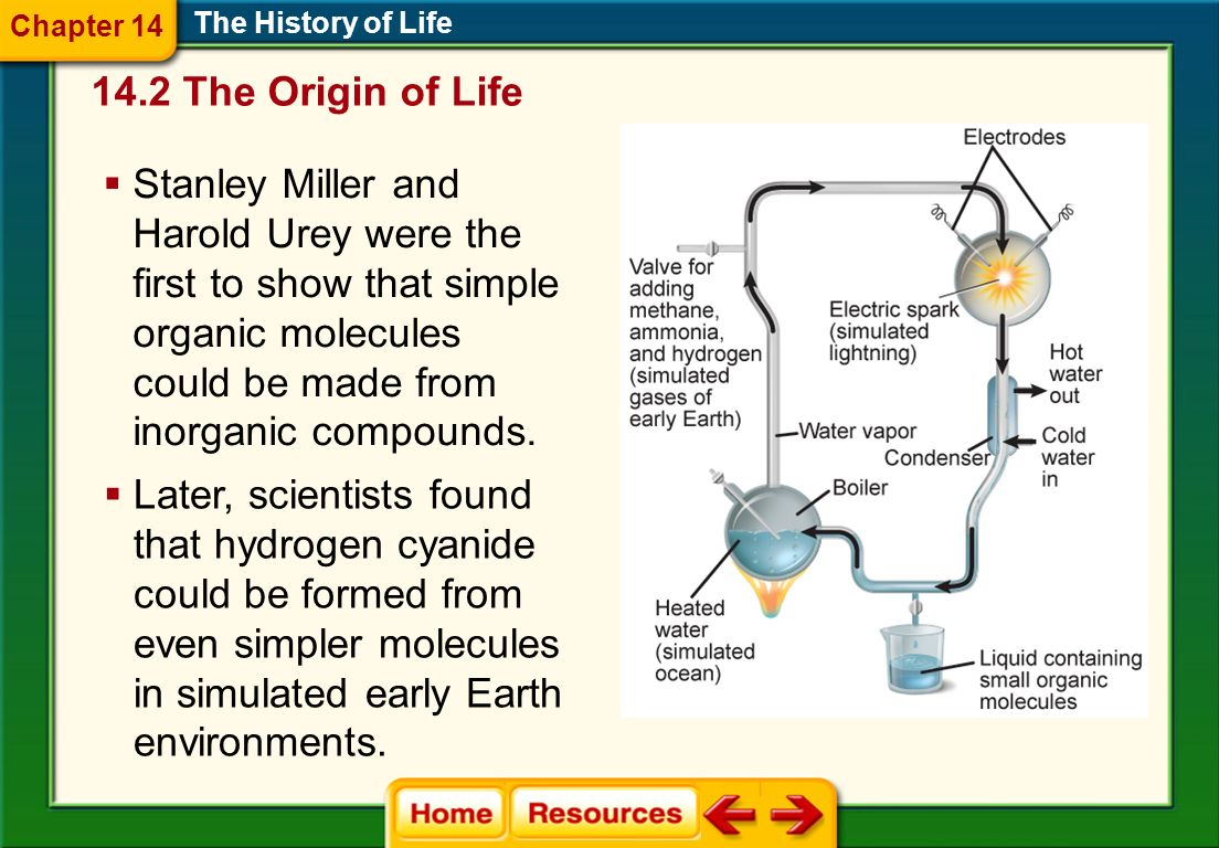Origins: Modern Ideas The History of Life Simple organic molecule formation The primordial soup hypothesis was an early hypothesis about the origin of life.