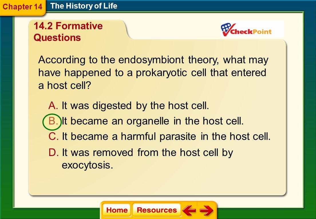 A.biogenesis B. transgenesis C. primordial generation D.