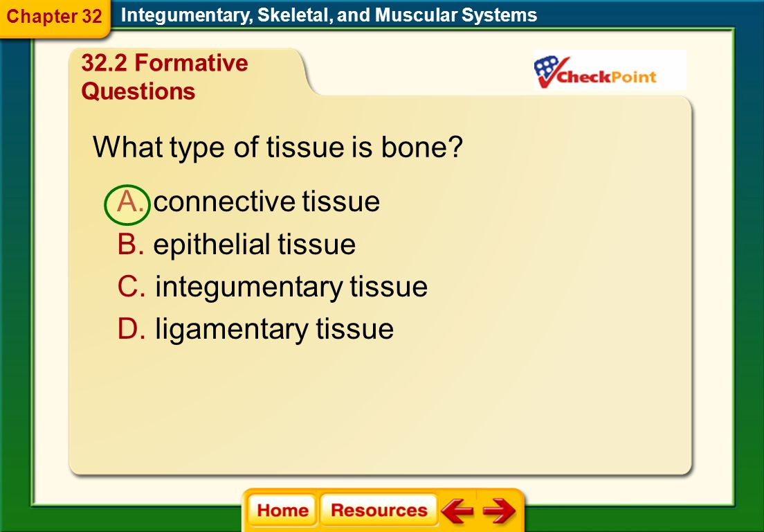 Which division of the skeleton is related to the movement of limbs? A. axial skeleton B. appendicular skeleton Integumentary, Skeletal, and Muscular S