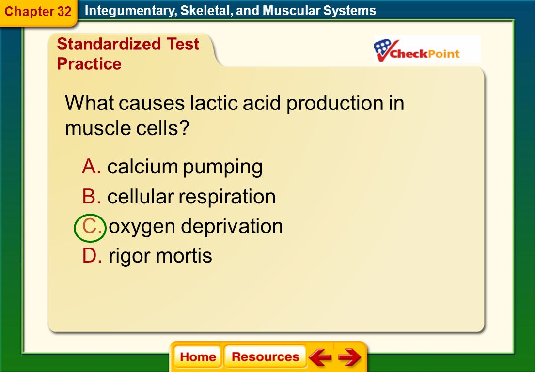Which joint provides the widest range of motion? Integumentary, Skeletal, and Muscular Systems Standardized Test Practice Chapter 32