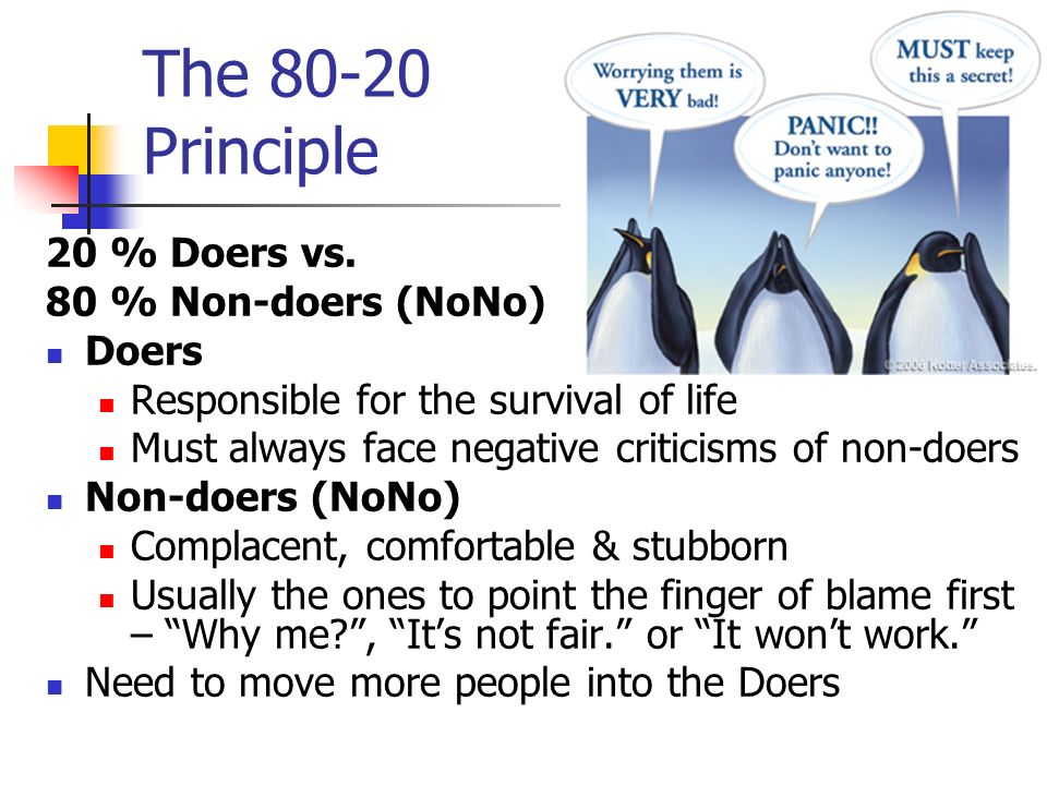 The 80-20 Principle 20 % Doers vs. 80 % Non-doers (NoNo) Doers Responsible for the survival of life Must always face negative criticisms of non-doers