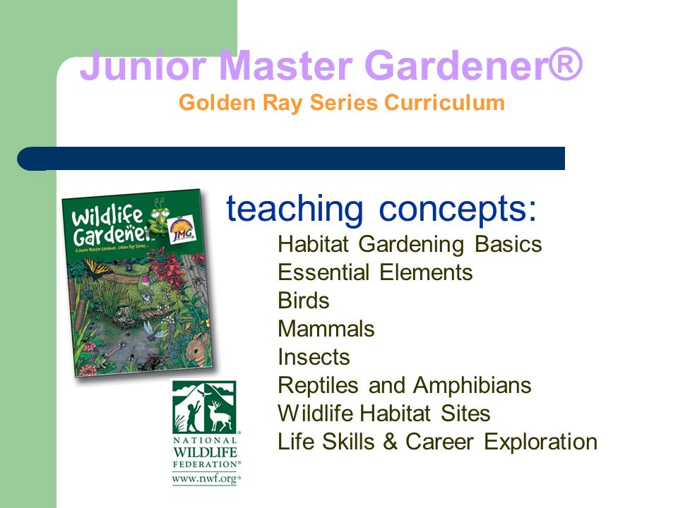 Junior Master Gardener ® Golden Ray Series Curriculum teaching concepts: Habitat Gardening Basics Essential Elements Birds Mammals Insects Reptiles and Amphibians Wildlife Habitat Sites Life Skills & Career Exploration