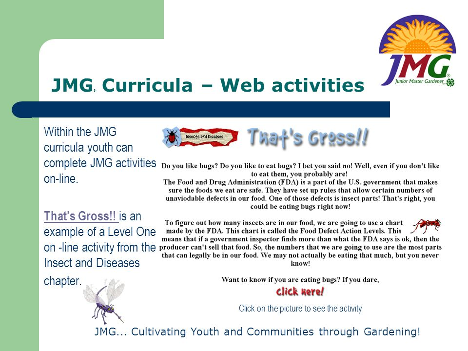 JMG... Cultivating Youth and Communities through Gardening! JMG ® Curricula – Web activities Within the JMG curricula youth can complete JMG activitie