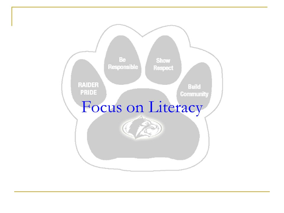 Focus on Literacy