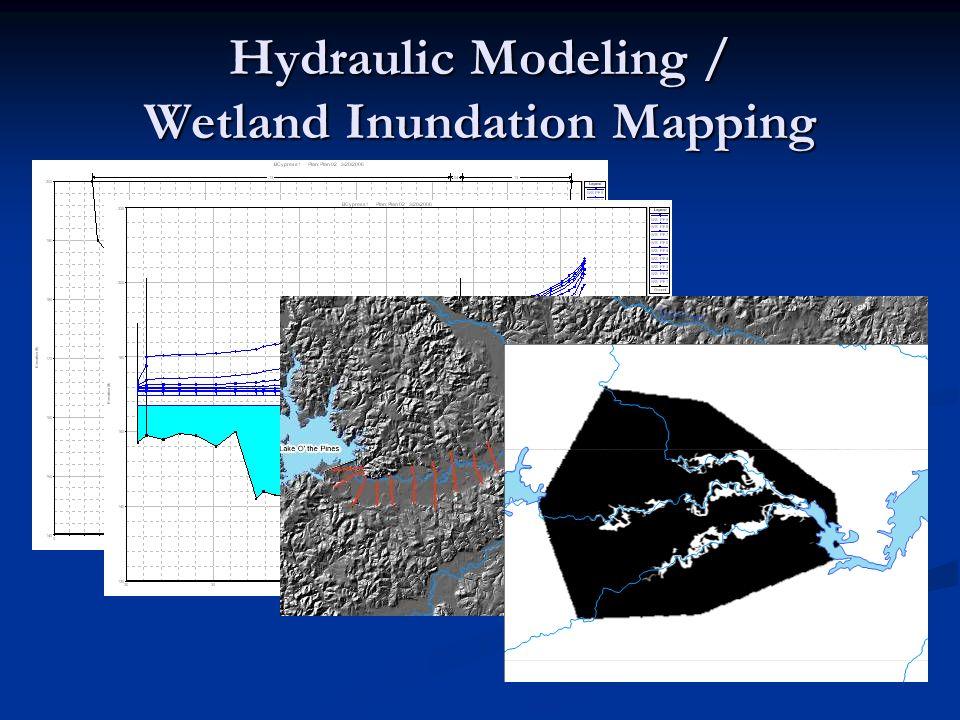 Hydraulic Modeling / Wetland Inundation Mapping