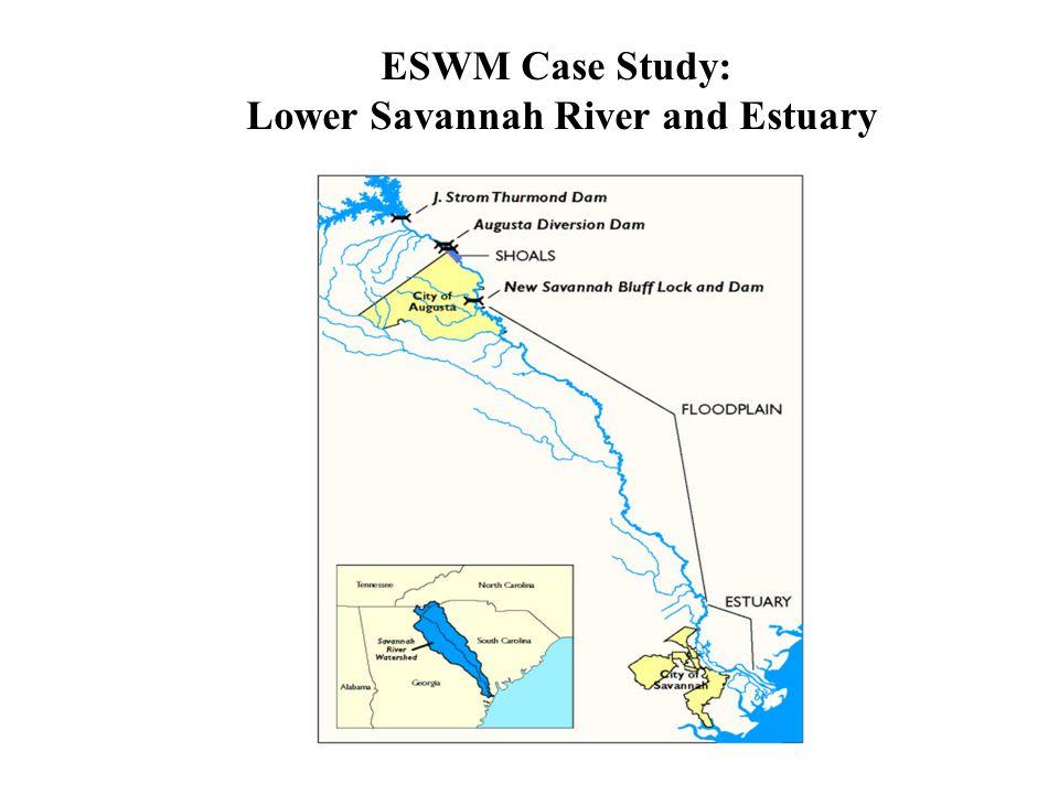 ESWM Case Study: Lower Savannah River and Estuary