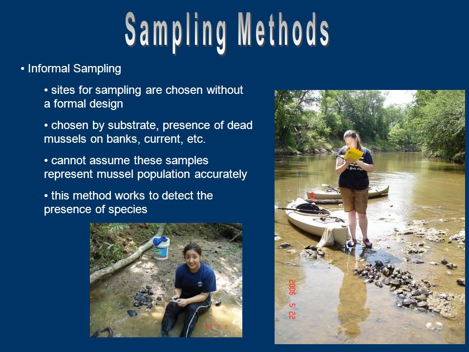 Informal Sampling sites for sampling are chosen without a formal design chosen by substrate, presence of dead mussels on banks, current, etc.