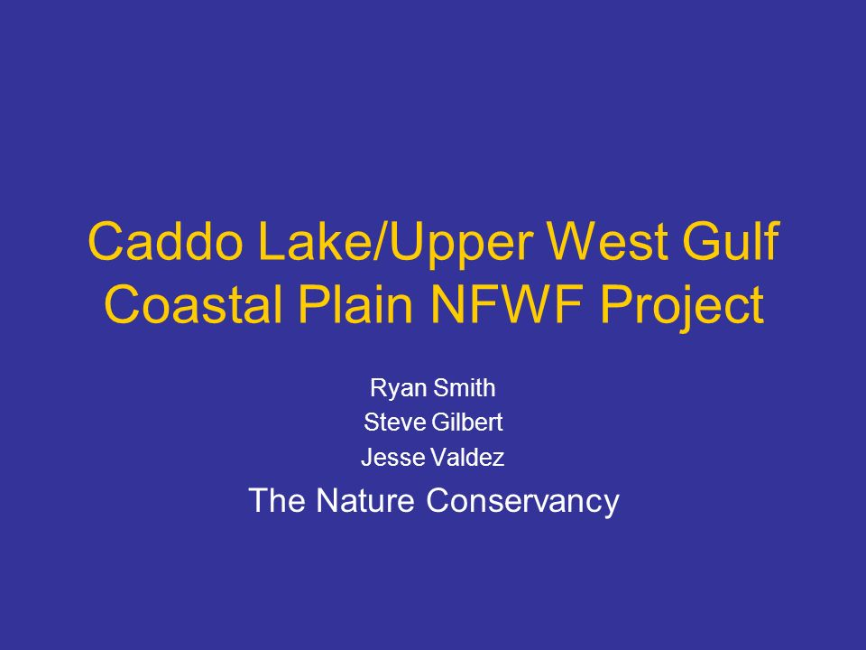Components Completion June 2008 Revision of conservation assessment of the Upper West Gulf Coastal Plan ecoregion –Aquatic biodiversity assessment –Revision of terrestrial prioritization Data atlas –Caddo Lake watershed