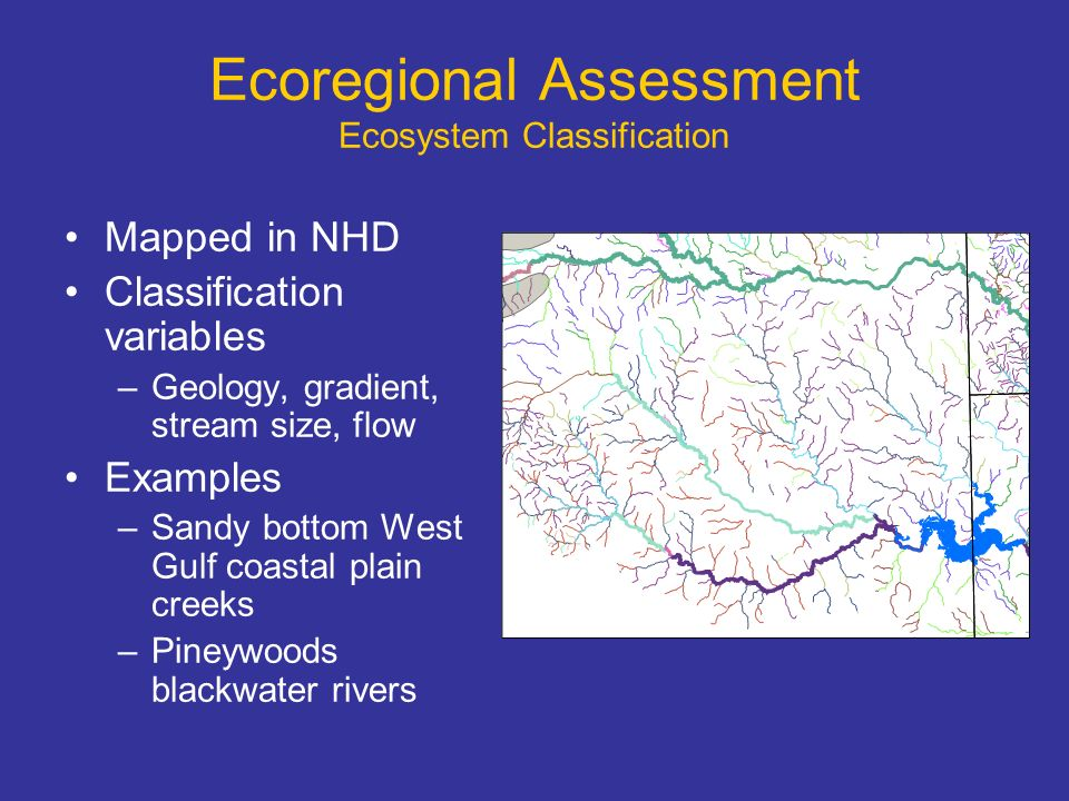 Ecoregional Assessment Areas of Biodiversity Significance