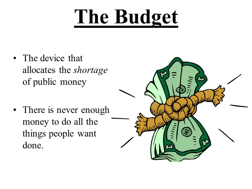 Budget Analysts Are able to communicate well with all levels in an organization, including top policy makers