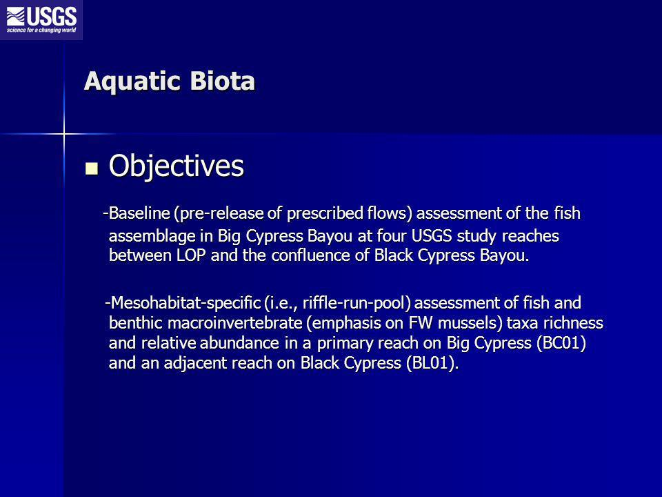 Aquatic Biota Objectives Objectives -Baseline (pre-release of prescribed flows) assessment of the fish assemblage in Big Cypress Bayou at four USGS study reaches between LOP and the confluence of Black Cypress Bayou.