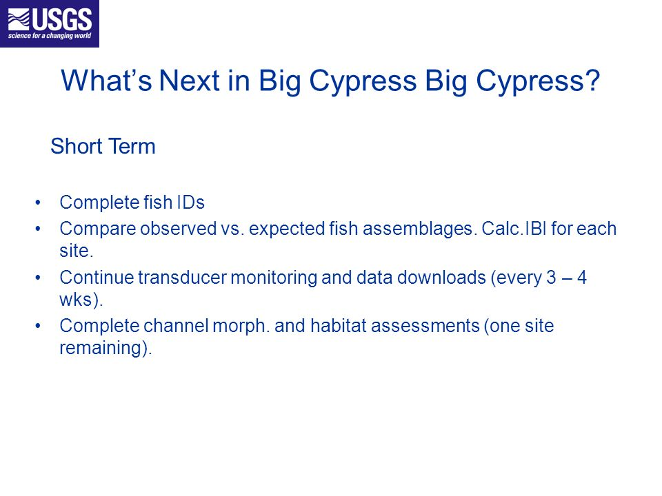 Whats Next in Big Cypress Big Cypress? Complete fish IDs Compare observed vs. expected fish assemblages. Calc.IBI for each site. Continue transducer m