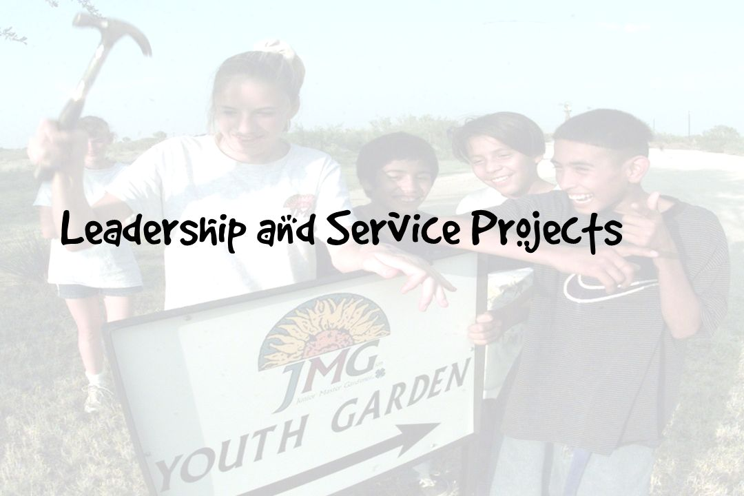 Leadership and Service Projects