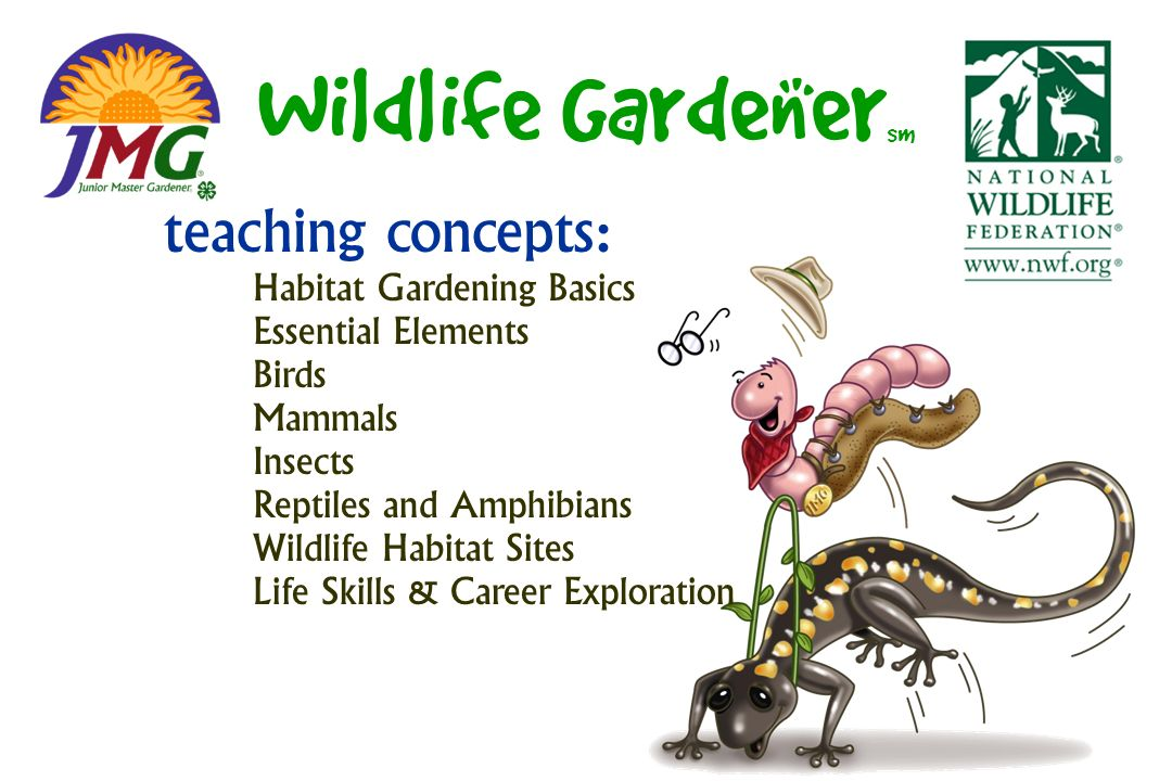 Wildlife Gardener sm teaching concepts: Habitat Gardening Basics Essential Elements Birds Mammals Insects Reptiles and Amphibians Wildlife Habitat Sites Life Skills & Career Exploration
