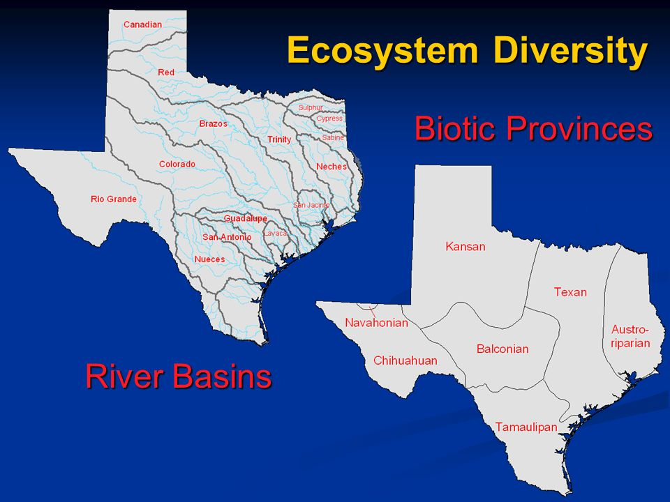 River Basins Biotic Provinces Ecosystem Diversity