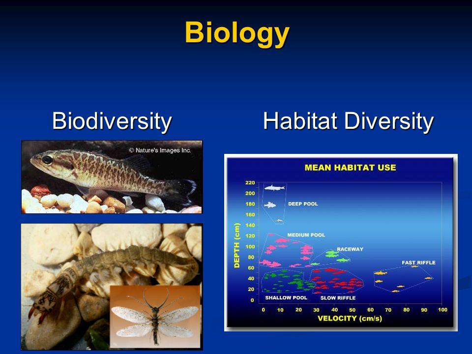 Biology Habitat Diversity Biodiversity