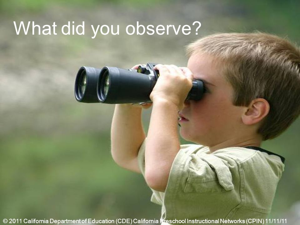 What did you observe? © 2011 California Department of Education (CDE) California Preschool Instructional Networks (CPIN) 11/11/11