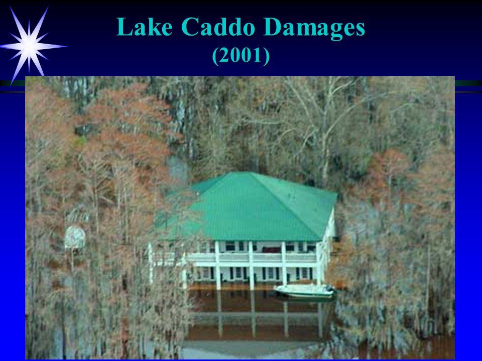 Lake Caddo Damages (2001)