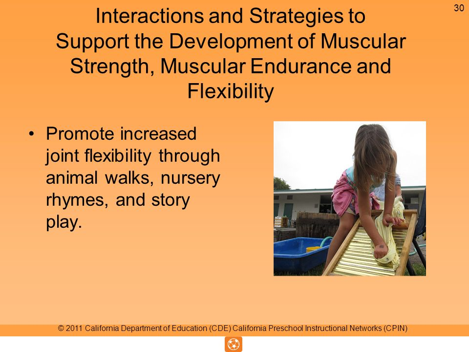 Interactions and Strategies to Support the Development of Muscular Strength, Muscular Endurance and Flexibility Promote increased joint flexibility th
