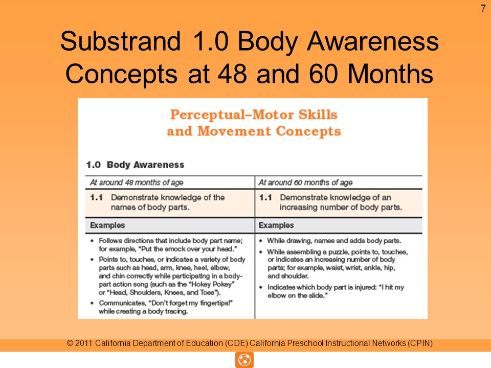 Substrand 1.0 Body Awareness Concepts at 48 and 60 Months 7 © 2011 California Department of Education (CDE) California Preschool Instructional Networks (CPIN)
