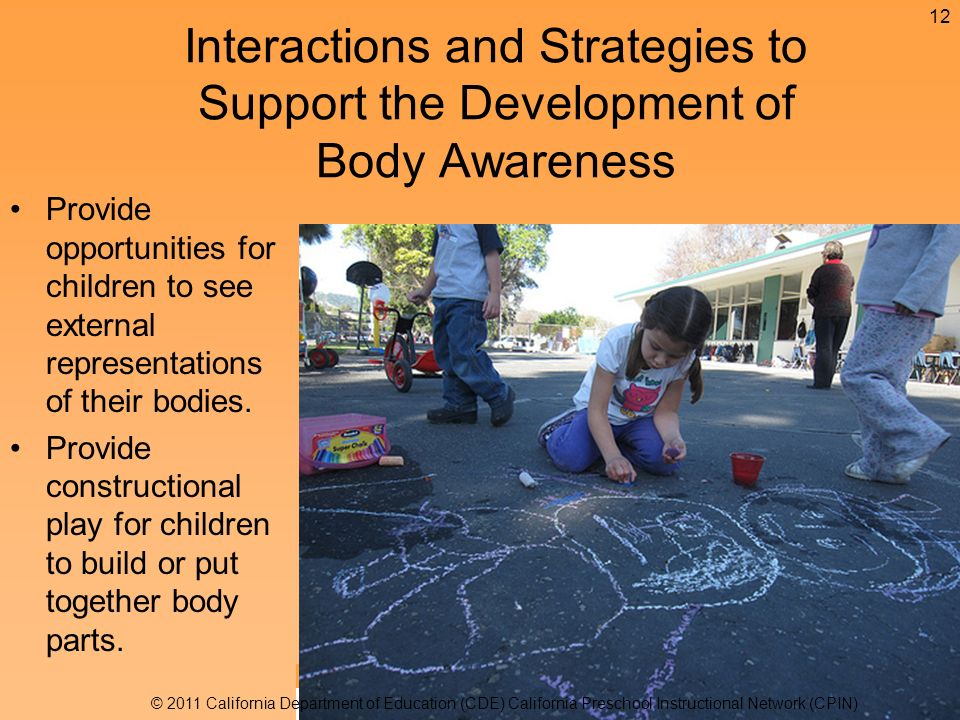 Provide opportunities for children to see external representations of their bodies.