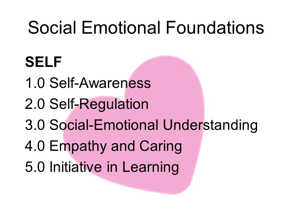 Social Emotional Foundations SELF 1.0 Self-Awareness 2.0 Self-Regulation 3.0 Social-Emotional Understanding 4.0 Empathy and Caring 5.0 Initiative in Learning