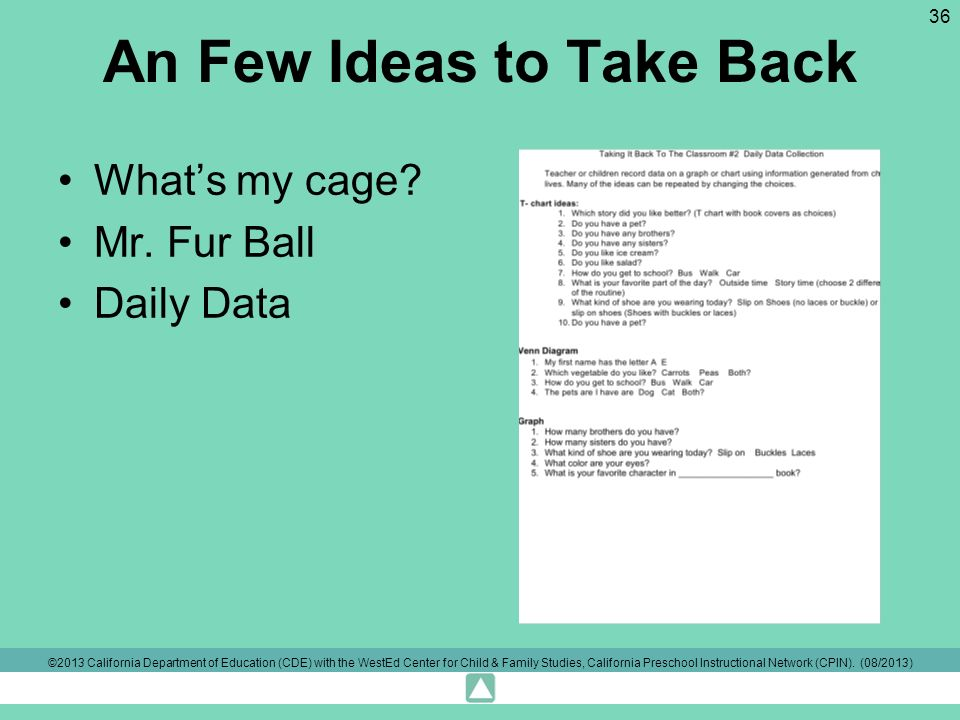 An Few Ideas to Take Back Whats my cage? Mr. Fur Ball Daily Data ©2013 California Department of Education (CDE) with the WestEd Center for Child & Fam