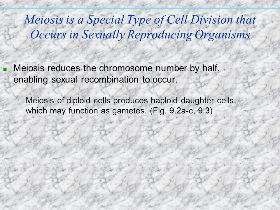 Meiosis is a Special Type of Cell Division that Occurs in Sexually Reproducing Organisms n Meiosis reduces the chromosome number by half, enabling sex
