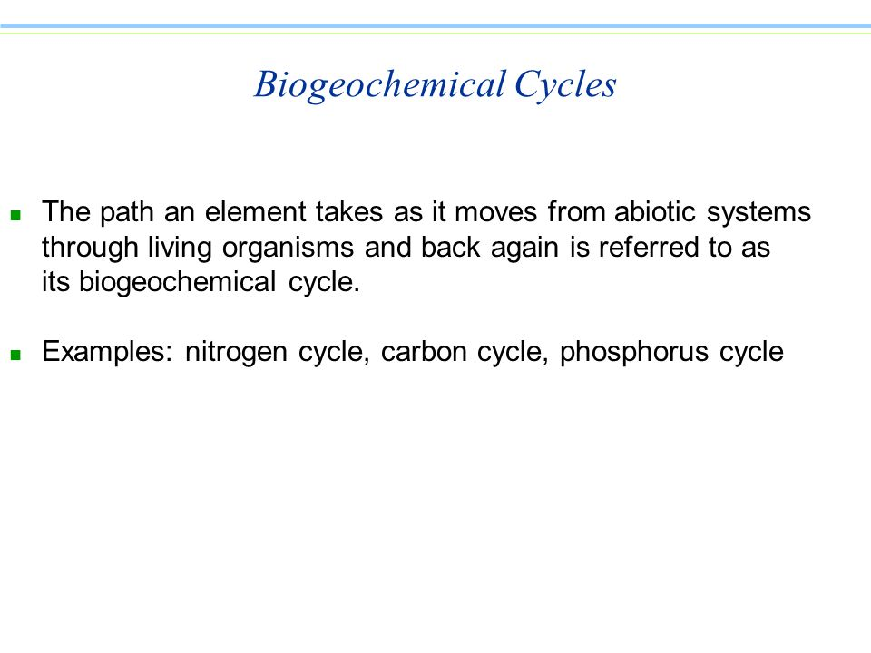 Biogeochemical Cycles n The path an element takes as it moves from abiotic systems through living organisms and back again is referred to as its bioge