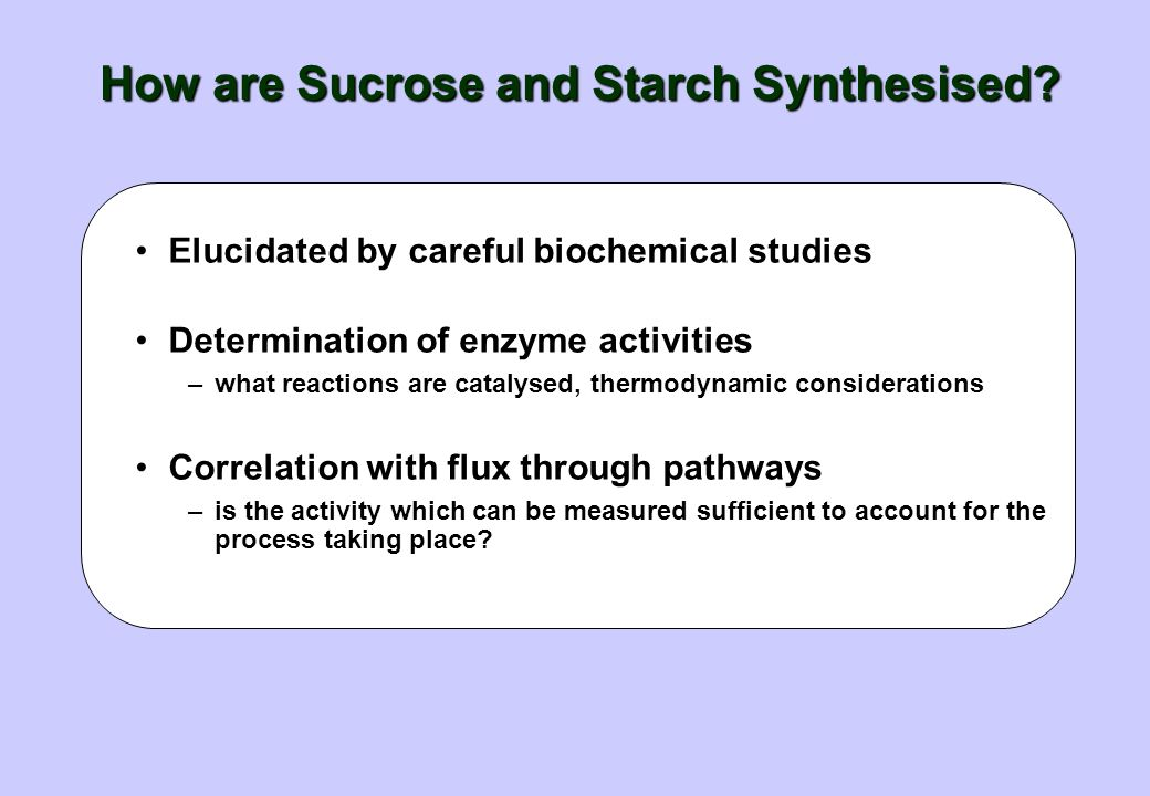 Fructans Some plants store other compounds Most common are the fructans –water-soluble, non reducing polymers of fructose –5 - 300 fructose units, joi