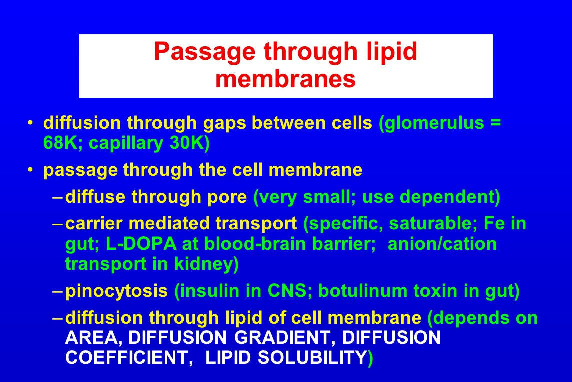 Passage through lipid membranes diffusion through gaps between cells (glomerulus = 68K; capillary 30K) passage through the cell membrane –diffuse thro